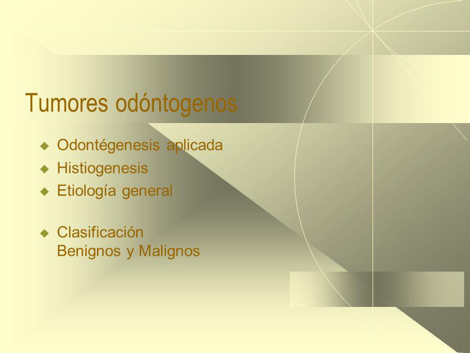 Tumores odóntogenos  Odontégenesis aplicada  Histiogenesis  Etiología general  Clasificación Benignos y Malignos