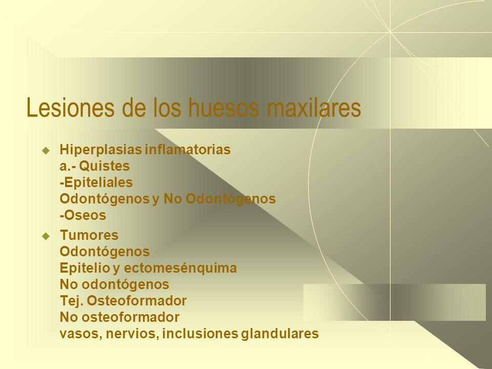 Lesiones de los huesos maxilares  Hiperplasias inflamatorias a.- Quistes -Epiteliales Odontógenos y No Odontógenos -Oseos  Tumores Odontógenos Epitelio y ectomesénquima No odontógenos Tej.