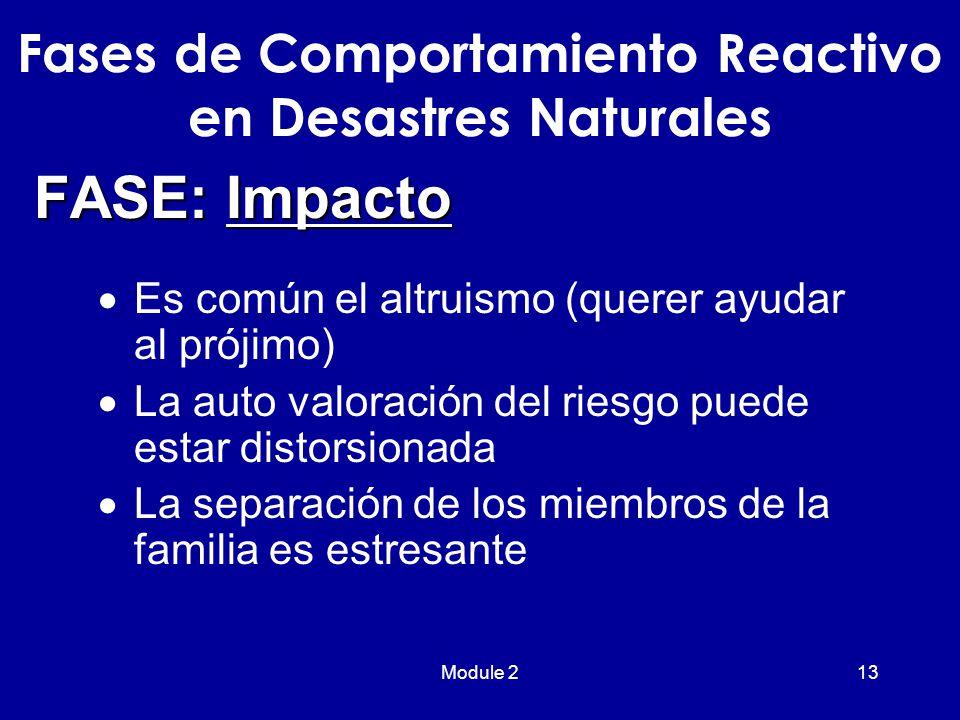 Module 213  Es común el altruismo (querer ayudar al prójimo)  La auto valoración del riesgo puede estar distorsionada  La separación de los miembros de la familia es estresante Fases de Comportamiento Reactivo en Desastres Naturales FASE: Impacto