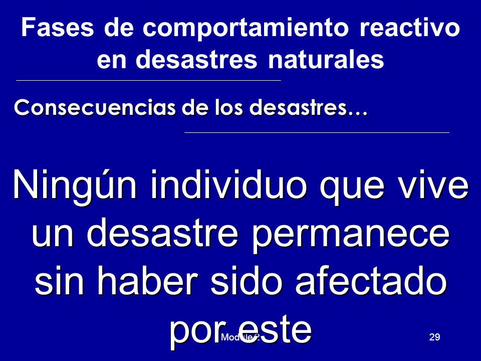 Module 229 Ningún individuo que vive un desastre permanece sin haber sido afectado por este Consecuencias de los desastres… Consecuencias de los desastres… Fases de comportamiento reactivo en desastres naturales