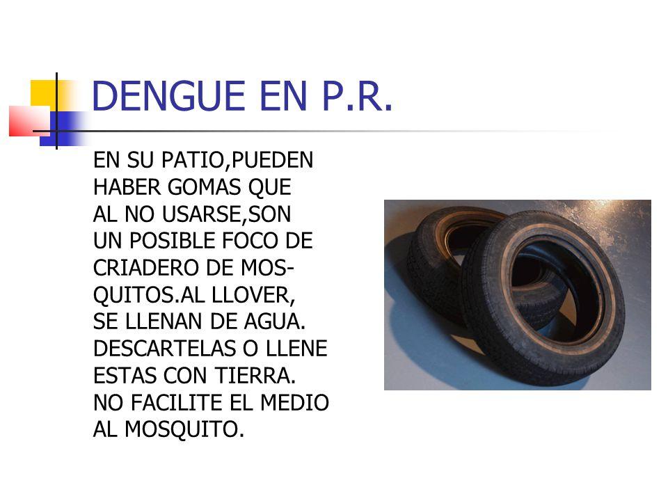 DENGUE EN P.R.