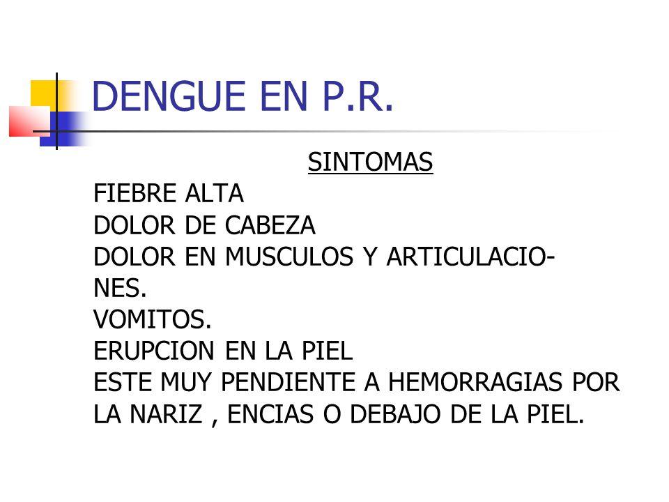 DENGUE EN P.R. SINTOMAS FIEBRE ALTA DOLOR DE CABEZA DOLOR EN MUSCULOS Y ARTICULACIO- NES.