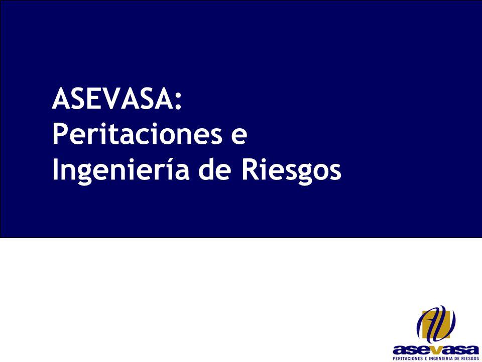 ASEVASA: Peritaciones e Ingeniería de Riesgos