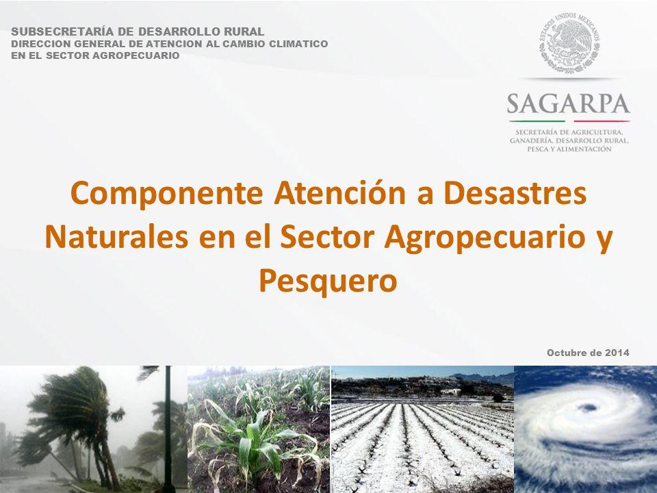 SUBSECRETARÍA DE DESARROLLO RURAL DIRECCION GENERAL DE ATENCION AL CAMBIO CLIMATICO EN EL SECTOR AGROPECUARIO Componente Atención a Desastres Naturales en el Sector Agropecuario y Pesquero Octubre de 2014
