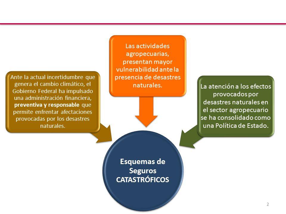 2 Esquemas de Seguros CATASTRÓFICOS Las actividades agropecuarias, presentan mayor vulnerabilidad ante la presencia de desastres naturales.