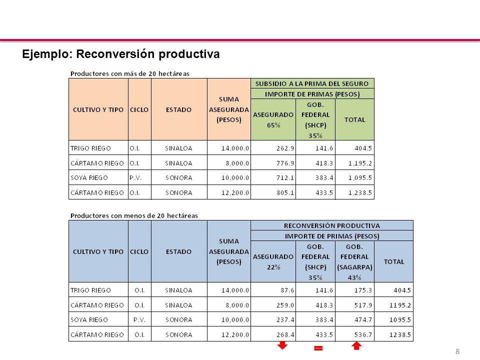 8 Ejemplo: Reconversión productiva