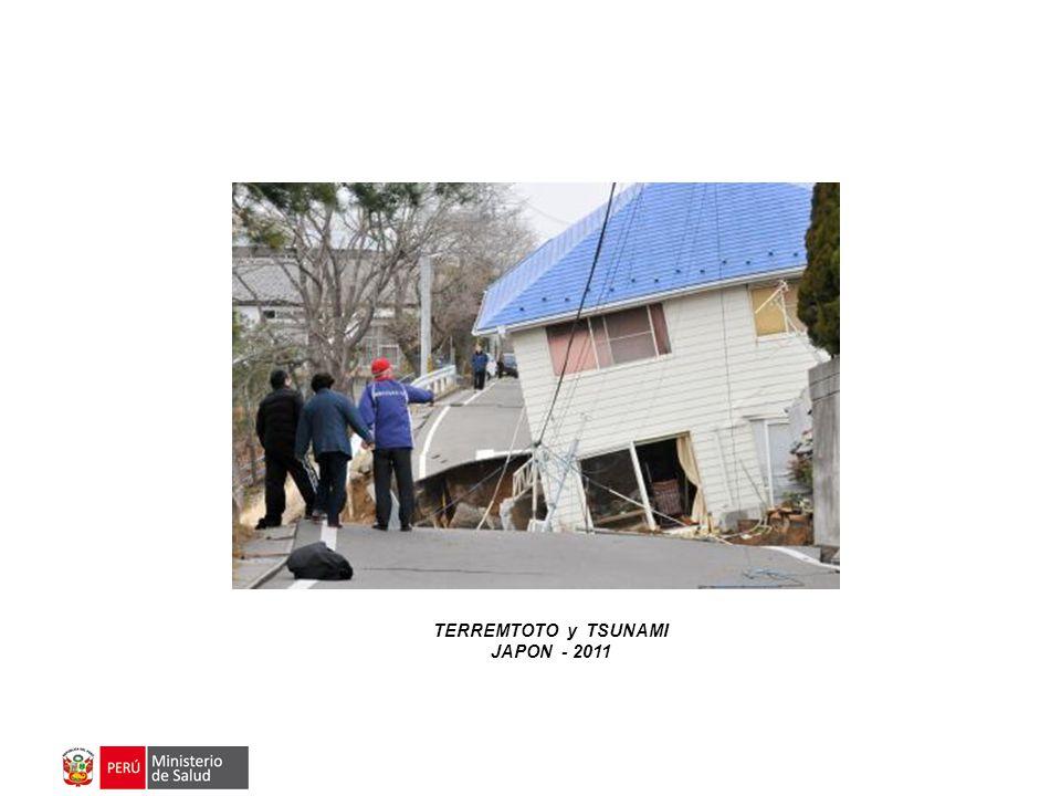 TERREMTOTO y TSUNAMI JAPON - 2011