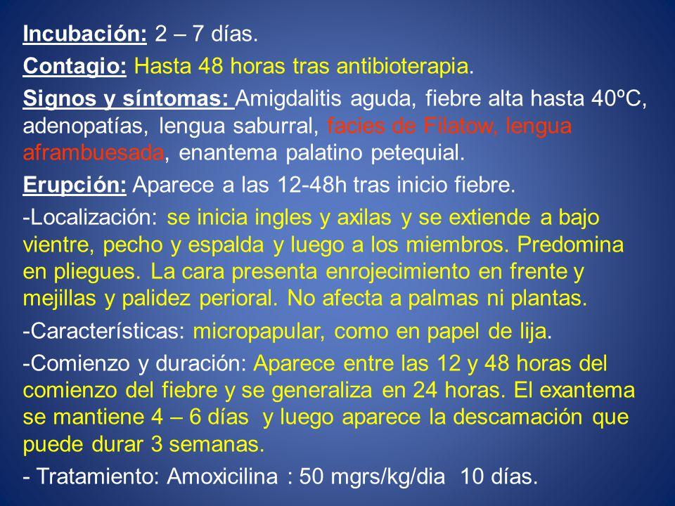 Incubación: 2 – 7 días.Contagio: Hasta 48 horas tras antibioterapia.