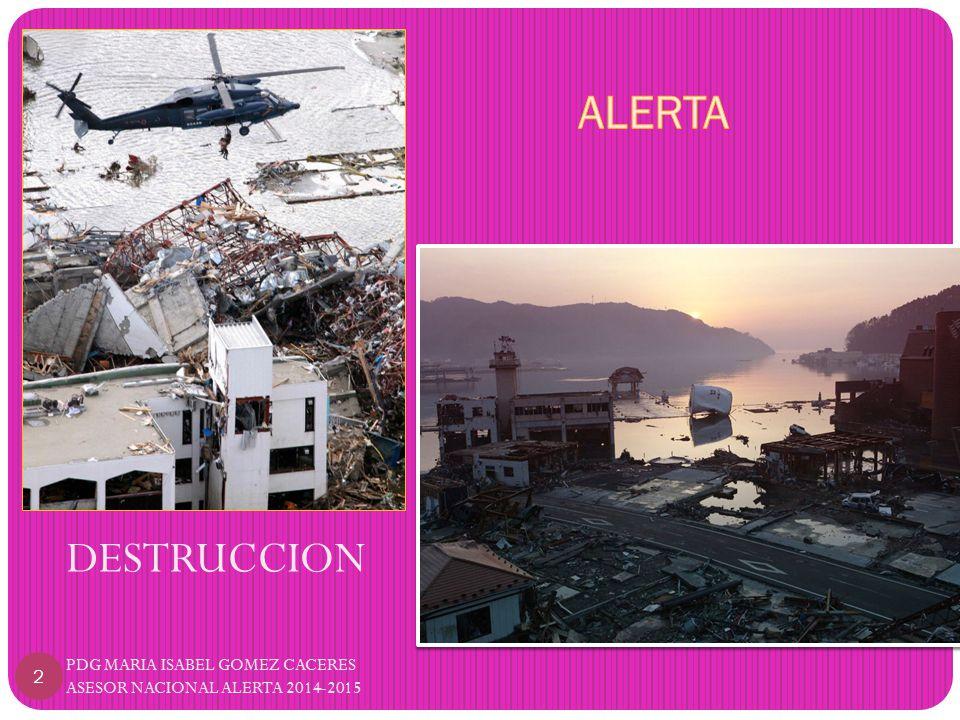DESTRUCCION PDG MARIA ISABEL GOMEZ CACERES ASESOR NACIONAL ALERTA 2014-2015 2
