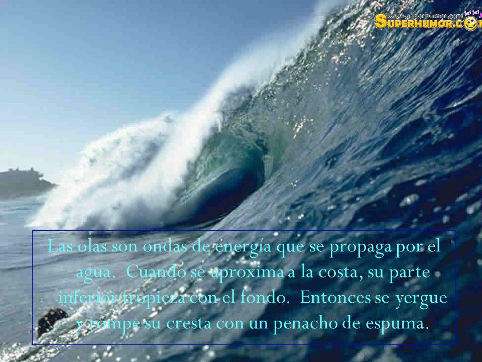 Las olas son ondas de energía que se propaga por el agua.