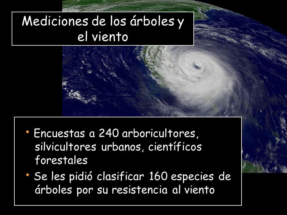 Encuestas a 240 arboricultores, silvicultores urbanos, científicos forestales Se les pidió clasificar 160 especies de árboles por su resistencia al viento Mediciones de los árboles y el viento