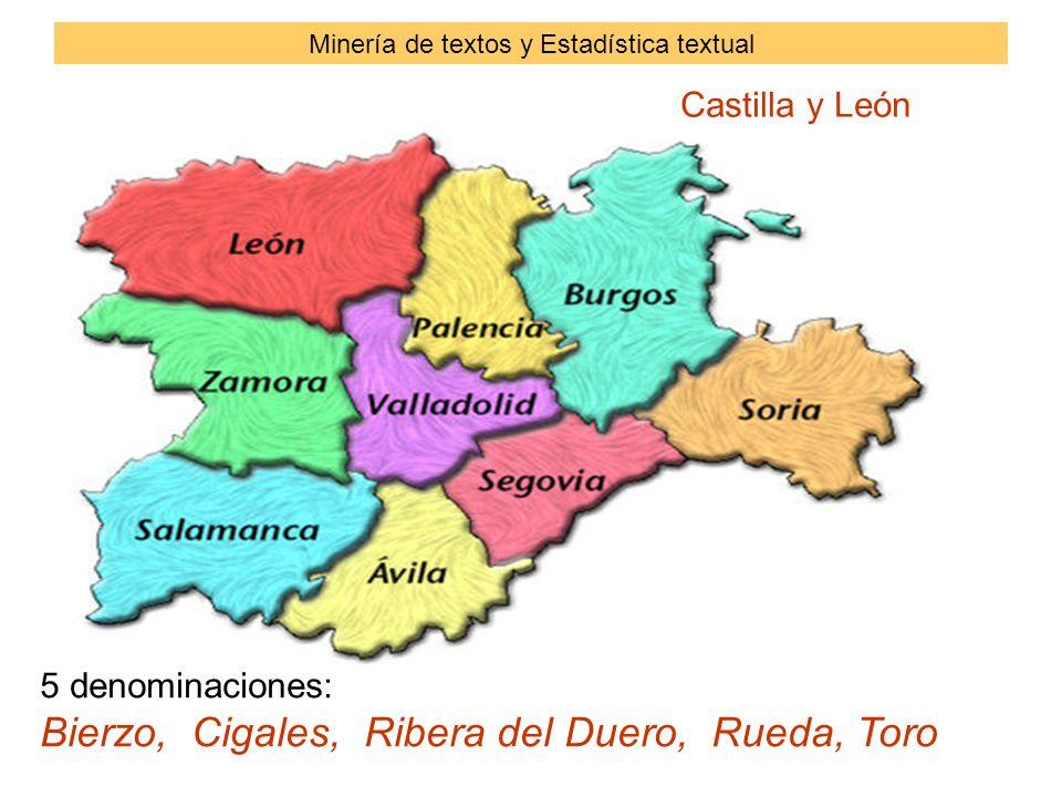 Castilla y León 5 denominaciones: Bierzo, Cigales, Ribera del Duero, Rueda, Toro Minería de textos y Estadística textual