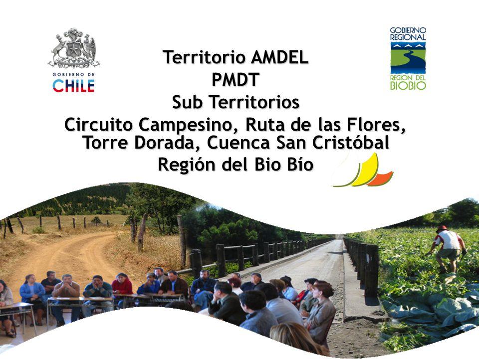 Territorio AMDEL PMDT Sub Territorios Circuito Campesino, Ruta de las Flores, Torre Dorada, Cuenca San Cristóbal Región del Bio Bío