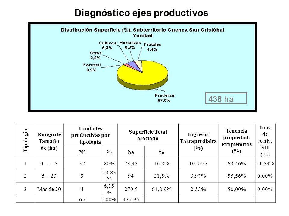 Diagnóstico ejes productivos Tipología Rango de Tamaño de (ha) Unidades productivas por tipología Superficie Total asociada Ingresos Extraprediales (%) Tenencia propiedad.