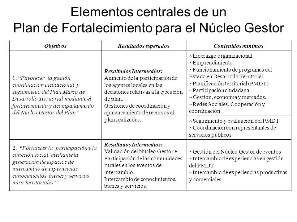 Elementos centrales de un Plan de Fortalecimiento para el Núcleo Gestor ObjetivosResultados esperadosContenidos mínimos 1.