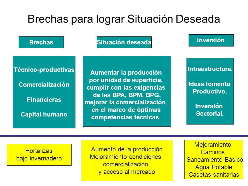 Brechas para lograr Situación Deseada BrechasSituación deseada Inversión Técnico-productivas Comercialización Financieras Capital humano Infraestructura.