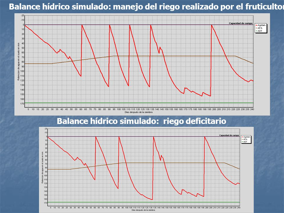 Balance hídrico simulado: manejo del riego realizado por el fruticultor Balance hídrico simulado: riego deficitario