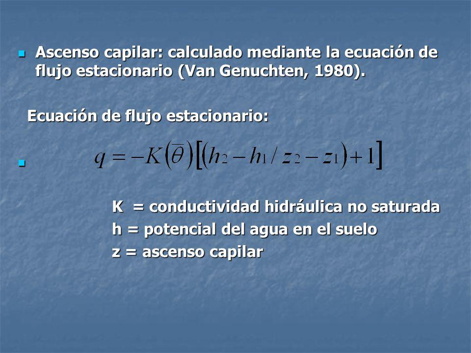 Ascenso capilar: calculado mediante la ecuación de flujo estacionario (Van Genuchten, 1980).