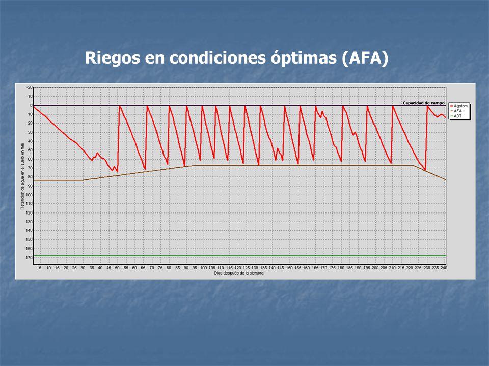 Riegos en condiciones óptimas (AFA)