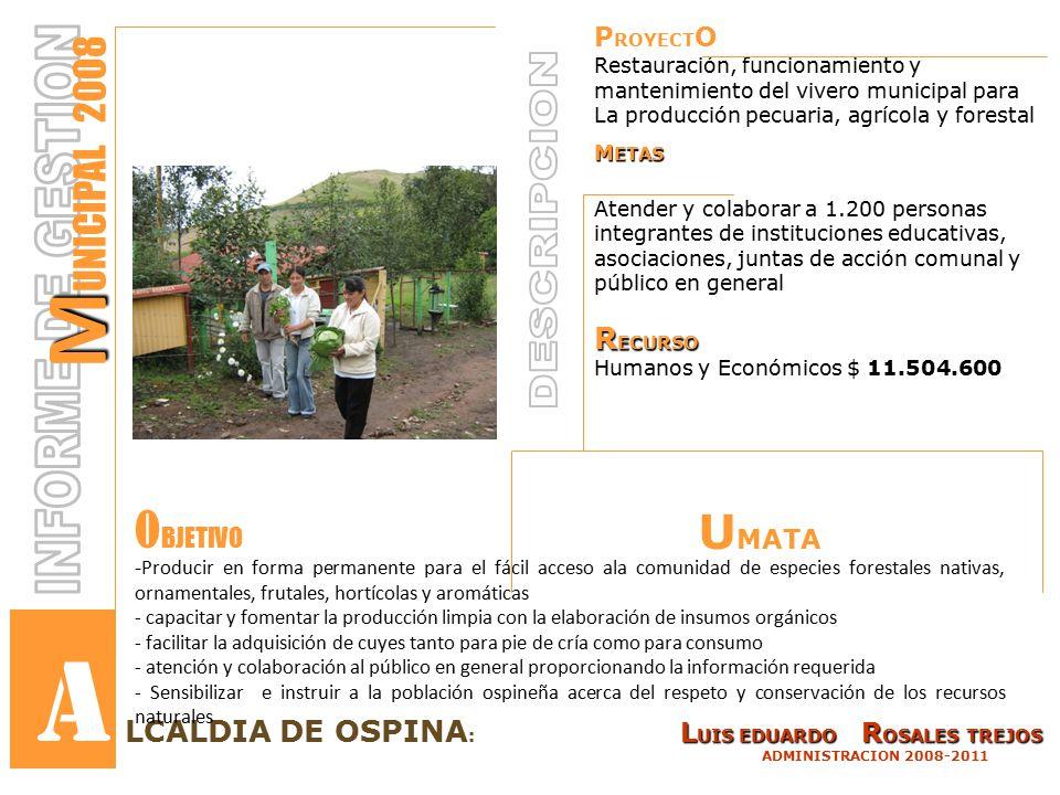 P ROYECT O Restauración, funcionamiento y mantenimiento del vivero municipal para La producción pecuaria, agrícola y forestal M ETAS Atender y colaborar a 1.200 personas integrantes de instituciones educativas, asociaciones, juntas de acción comunal y público en general R ECURSO Humanos y Económicos $ 11.504.600 L UIS EDUARDO R OSALES TREJOS LCALDIA DE OSPINA : L UIS EDUARDO R OSALES TREJOS ADMINISTRACION 2008-2011 M M UNICIPAL 2008 - Producir en forma permanente para el fácil acceso ala comunidad de especies forestales nativas, ornamentales, frutales, hortícolas y aromáticas - capacitar y fomentar la producción limpia con la elaboración de insumos orgánicos - facilitar la adquisición de cuyes tanto para pie de cría como para consumo - atención y colaboración al público en general proporcionando la información requerida - Sensibilizar e instruir a la población ospineña acerca del respeto y conservación de los recursos naturales O BJETIVO A U MATA