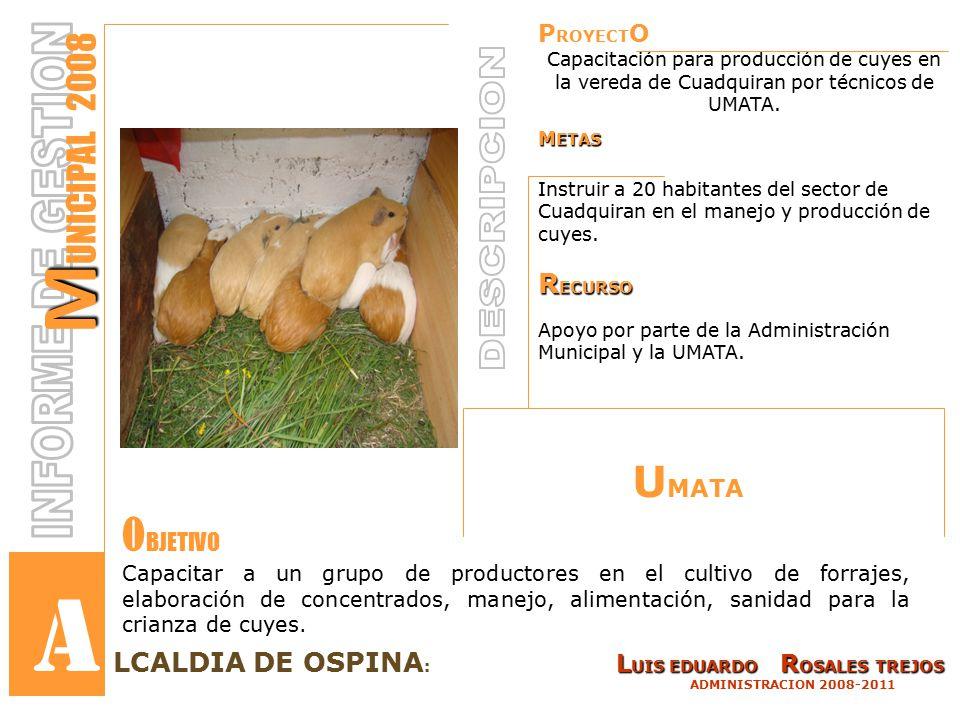 P ROYECT O Capacitación para producción de cuyes en la vereda de Cuadquiran por técnicos de UMATA.