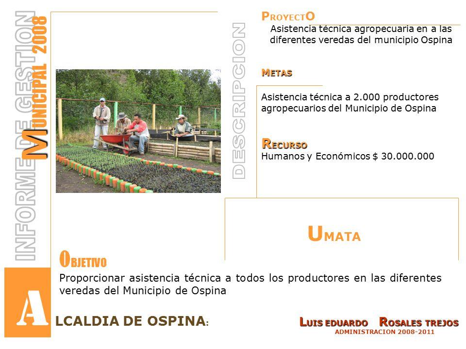 P ROYECT O Asistencia técnica agropecuaria en a las diferentes veredas del municipio Ospina M ETAS Asistencia técnica a 2.000 productores agropecuarios del Municipio de Ospina R ECURSO Humanos y Económicos $ 30.000.000 L UIS EDUARDO R OSALES TREJOS LCALDIA DE OSPINA : L UIS EDUARDO R OSALES TREJOS ADMINISTRACION 2008-2011 M M UNICIPAL 2008 Proporcionar asistencia técnica a todos los productores en las diferentes veredas del Municipio de Ospina O BJETIVO A U MATA