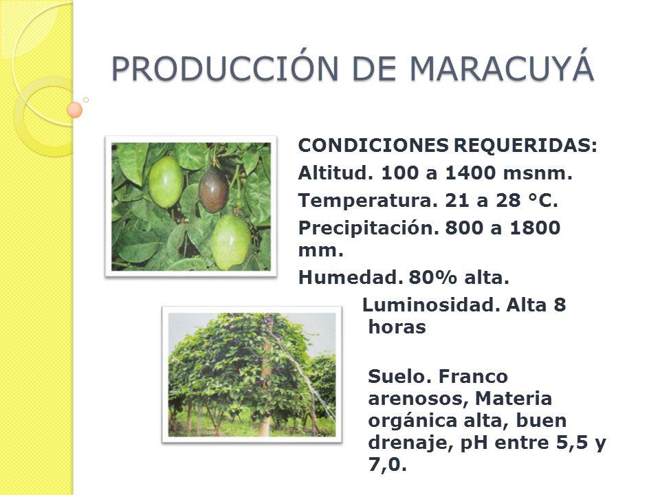 PRODUCCIÓN DE MARACUYÁ CONDICIONES REQUERIDAS: Altitud.