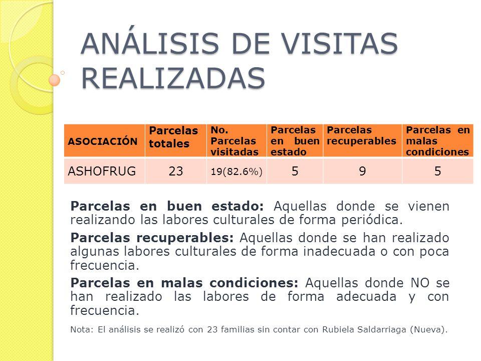 ANÁLISIS DE VISITAS REALIZADAS Parcelas en buen estado: Aquellas donde se vienen realizando las labores culturales de forma periódica.