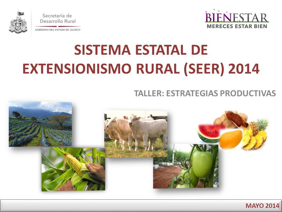SISTEMA ESTATAL DE EXTENSIONISMO RURAL (SEER) 2014 TALLER: ESTRATEGIAS PRODUCTIVAS MAYO 2014