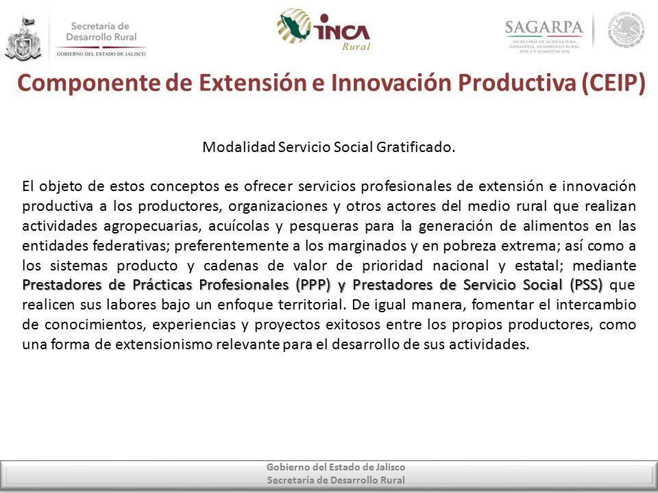 Componente de Extensión e Innovación Productiva (CEIP) Gobierno del Estado de Jalisco Secretaría de Desarrollo Rural Modalidad Servicio Social Gratificado.