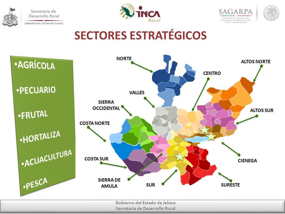 SECTORES ESTRATÉGICOS Gobierno del Estado de Jalisco Secretaría de Desarrollo Rural
