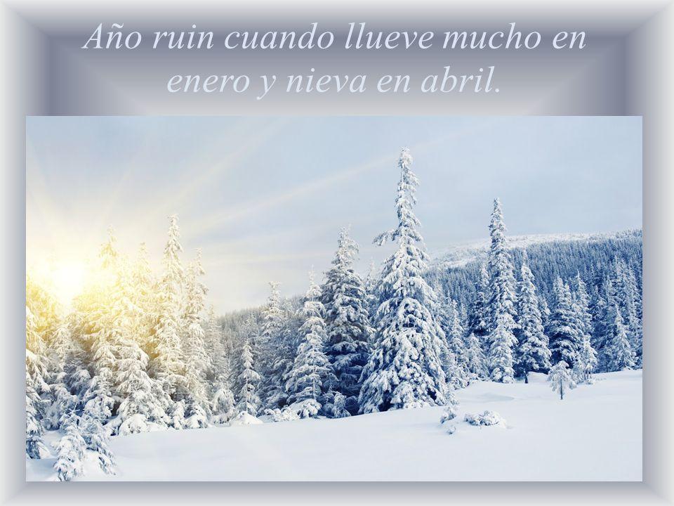 Año ruin cuando llueve mucho en enero y nieva en abril.