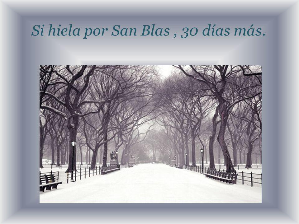 Si hiela por San Blas, 30 días más.
