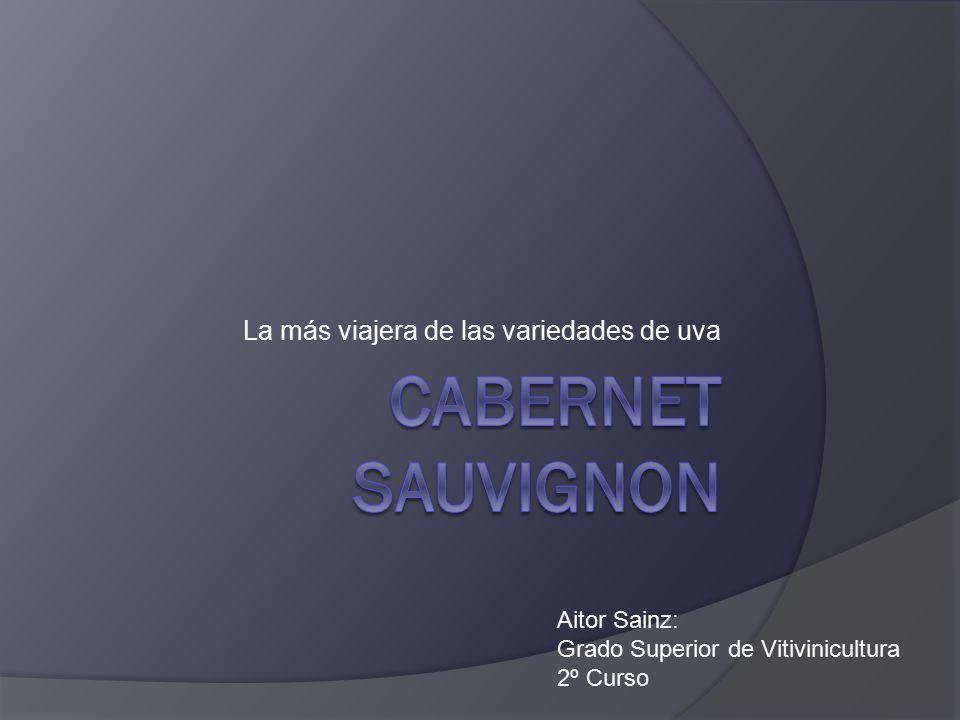 La más viajera de las variedades de uva Aitor Sainz: Grado Superior de Vitivinicultura 2º Curso
