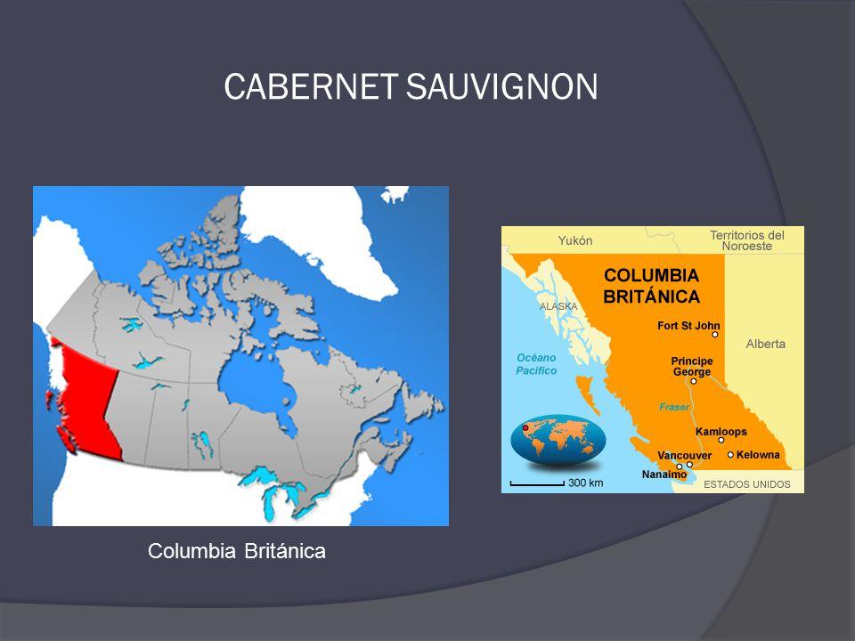 Columbia Británica CABERNET SAUVIGNON
