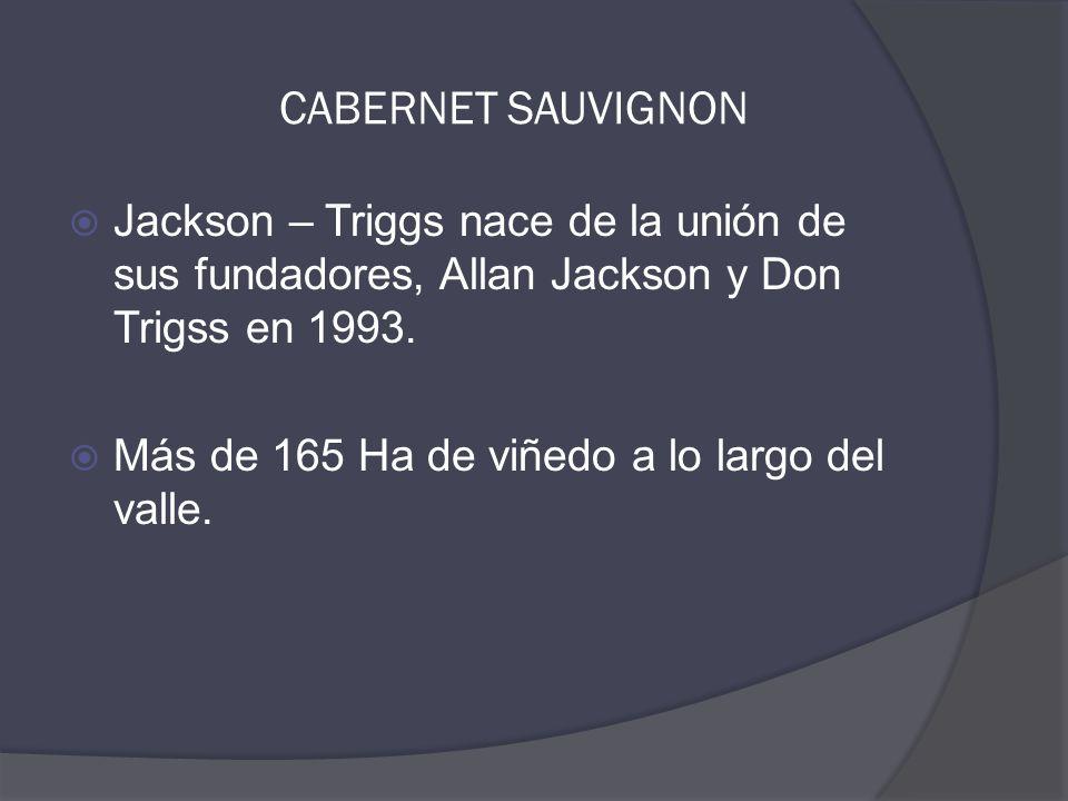  Jackson – Triggs nace de la unión de sus fundadores, Allan Jackson y Don Trigss en 1993.