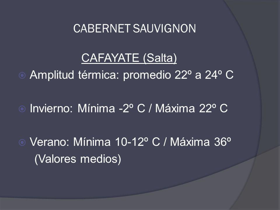 CAFAYATE (Salta)  Amplitud térmica: promedio 22º a 24º C  Invierno: Mínima -2º C / Máxima 22º C  Verano: Mínima 10-12º C / Máxima 36º (Valores medios) CABERNET SAUVIGNON