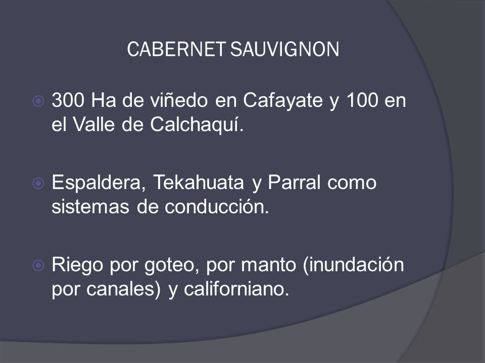  300 Ha de viñedo en Cafayate y 100 en el Valle de Calchaquí.