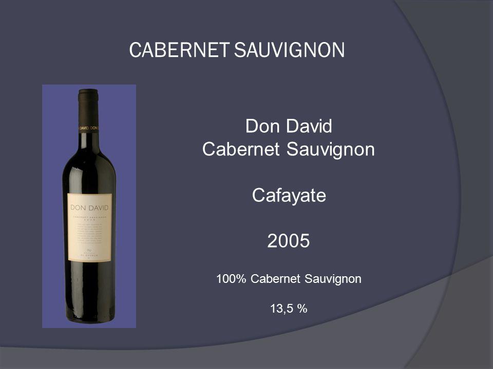Don David Cabernet Sauvignon Cafayate 2005 100% Cabernet Sauvignon 13,5 %