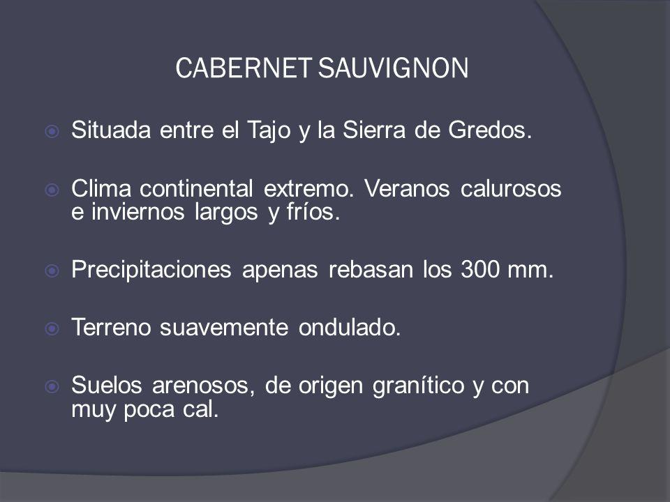  Situada entre el Tajo y la Sierra de Gredos.  Clima continental extremo.