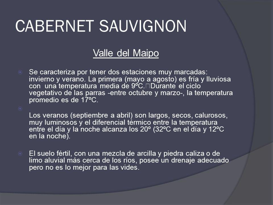 CABERNET SAUVIGNON Valle del Maipo  Se caracteriza por tener dos estaciones muy marcadas: invierno y verano.