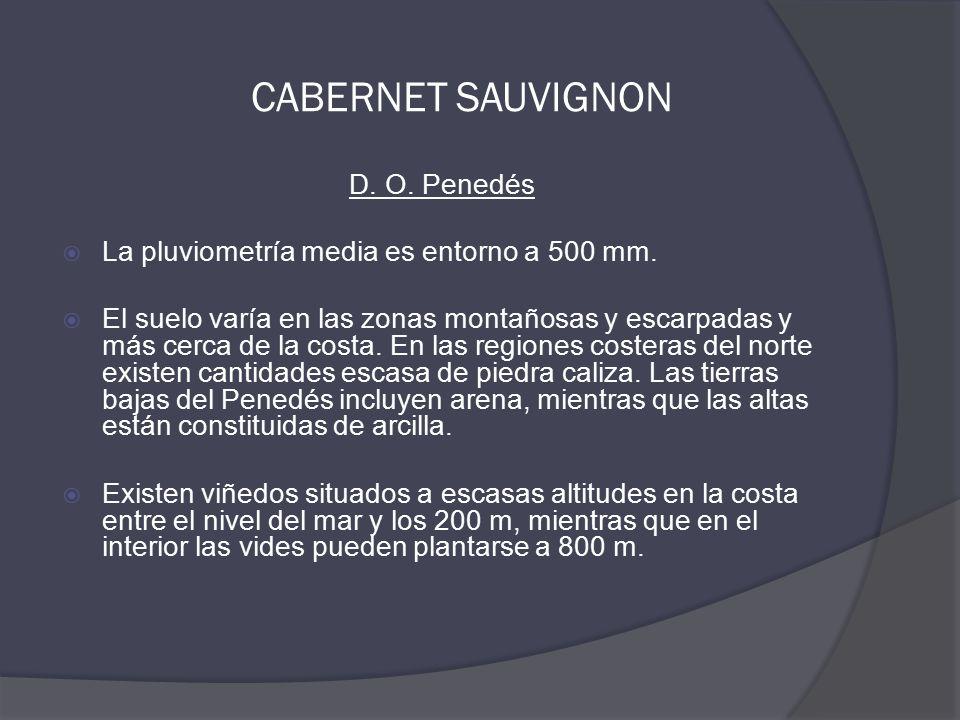 CABERNET SAUVIGNON D. O. Penedés  La pluviometría media es entorno a 500 mm.