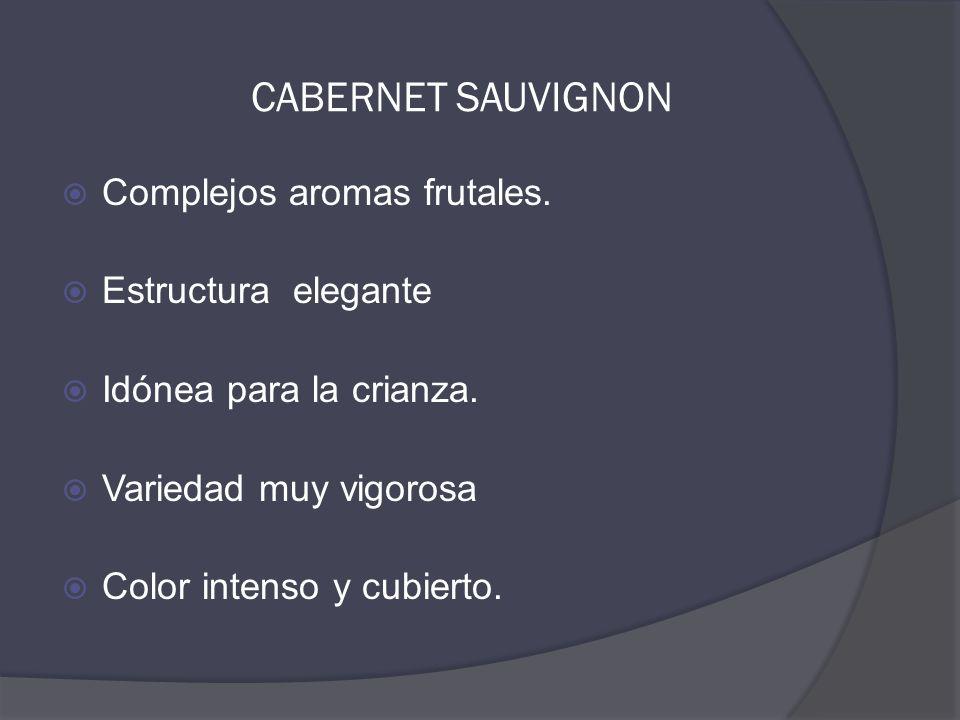 CABERNET SAUVIGNON  Complejos aromas frutales.  Estructura elegante  Idónea para la crianza.