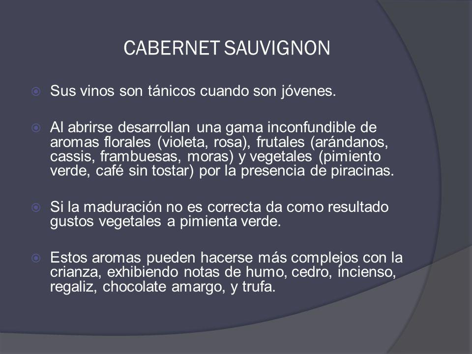 CABERNET SAUVIGNON  Sus vinos son tánicos cuando son jóvenes.