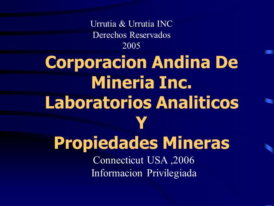 Corporacion Andina De Mineria Inc.