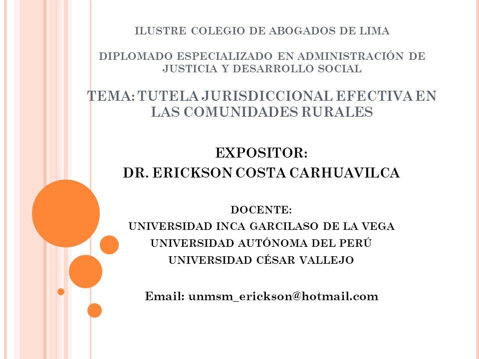 ILUSTRE COLEGIO DE ABOGADOS DE LIMA DIPLOMADO ESPECIALIZADO EN ADMINISTRACIÓN DE JUSTICIA Y DESARROLLO SOCIAL TEMA: TUTELA JURISDICCIONAL EFECTIVA EN LAS COMUNIDADES RURALES EXPOSITOR: DR.