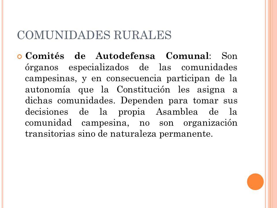COMUNIDADES RURALES Comités de Autodefensa Comunal : Son órganos especializados de las comunidades campesinas, y en consecuencia participan de la autonomía que la Constitución les asigna a dichas comunidades.