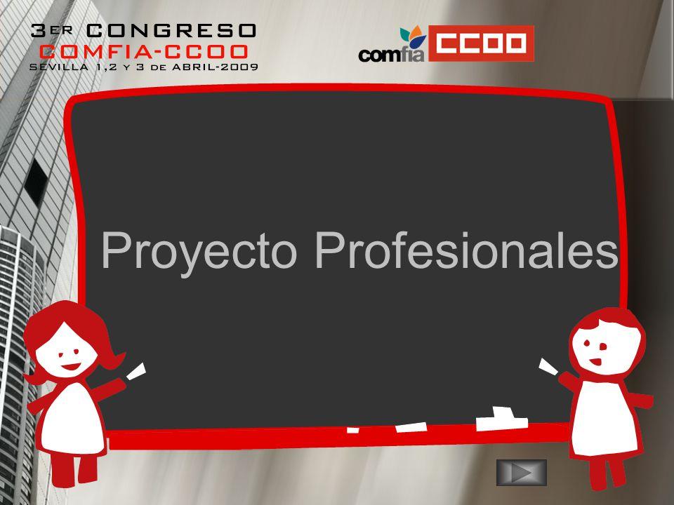 Proyecto Profesionales