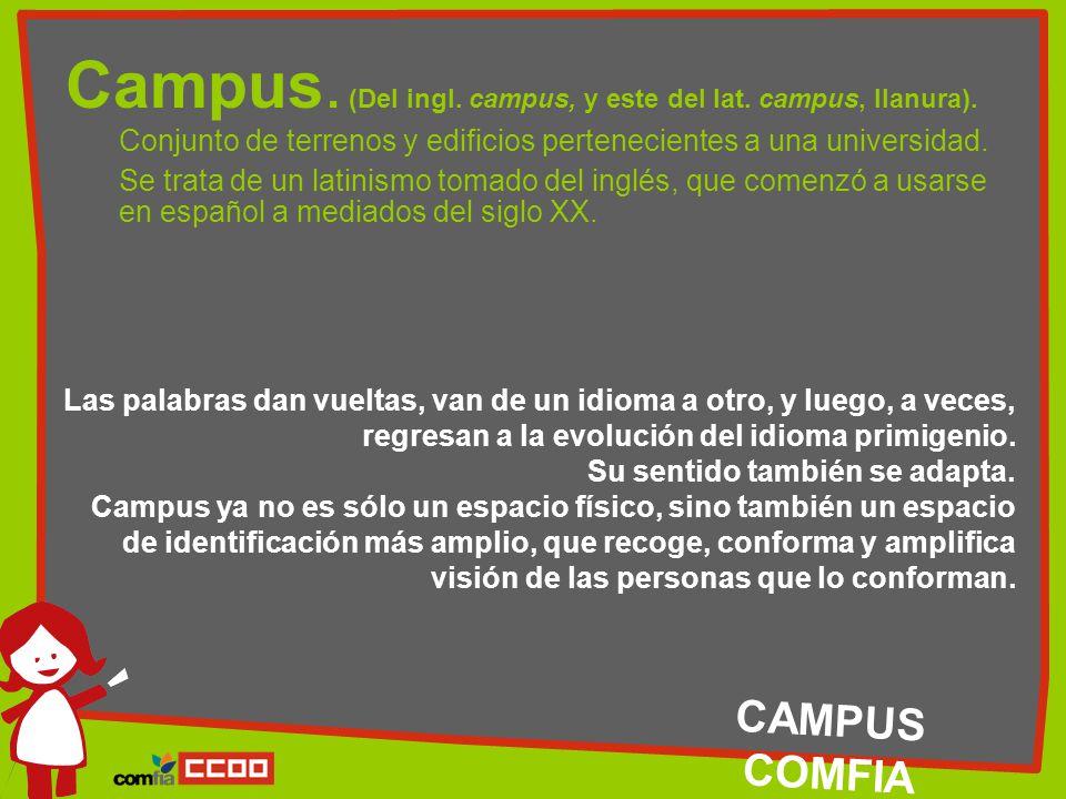 Campus. (Del ingl. campus, y este del lat. campus, llanura).
