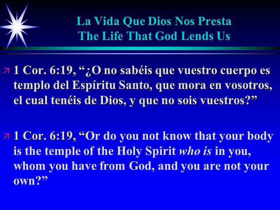 La Vida Que Dios Nos Presta The Life That God Lends Us ä 1 Cor.